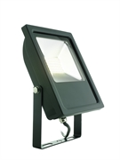 30W LED Floodlight in Black Pure White 6000K Mean Well Driver