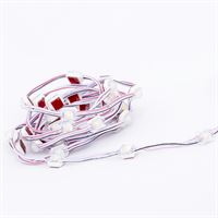 Mini LED Module 0.24W IP67 12V 40Pcs String for signage lighting applications